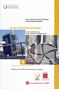 Guide Biomasse Energie