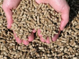 Le granulé de bois, combustible aux multiples utilisations