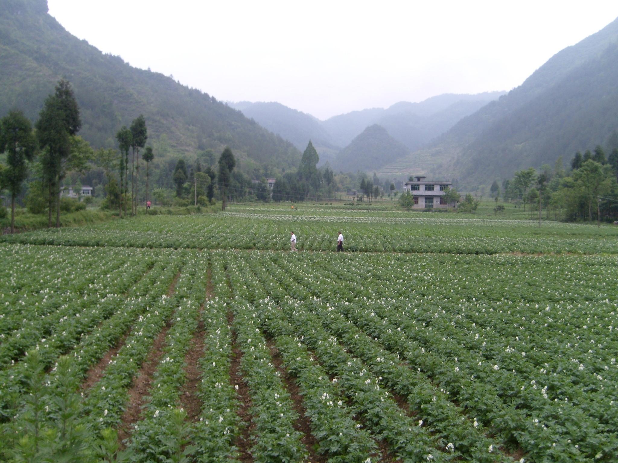 Le CRA-W au service des agriculteurs chinois