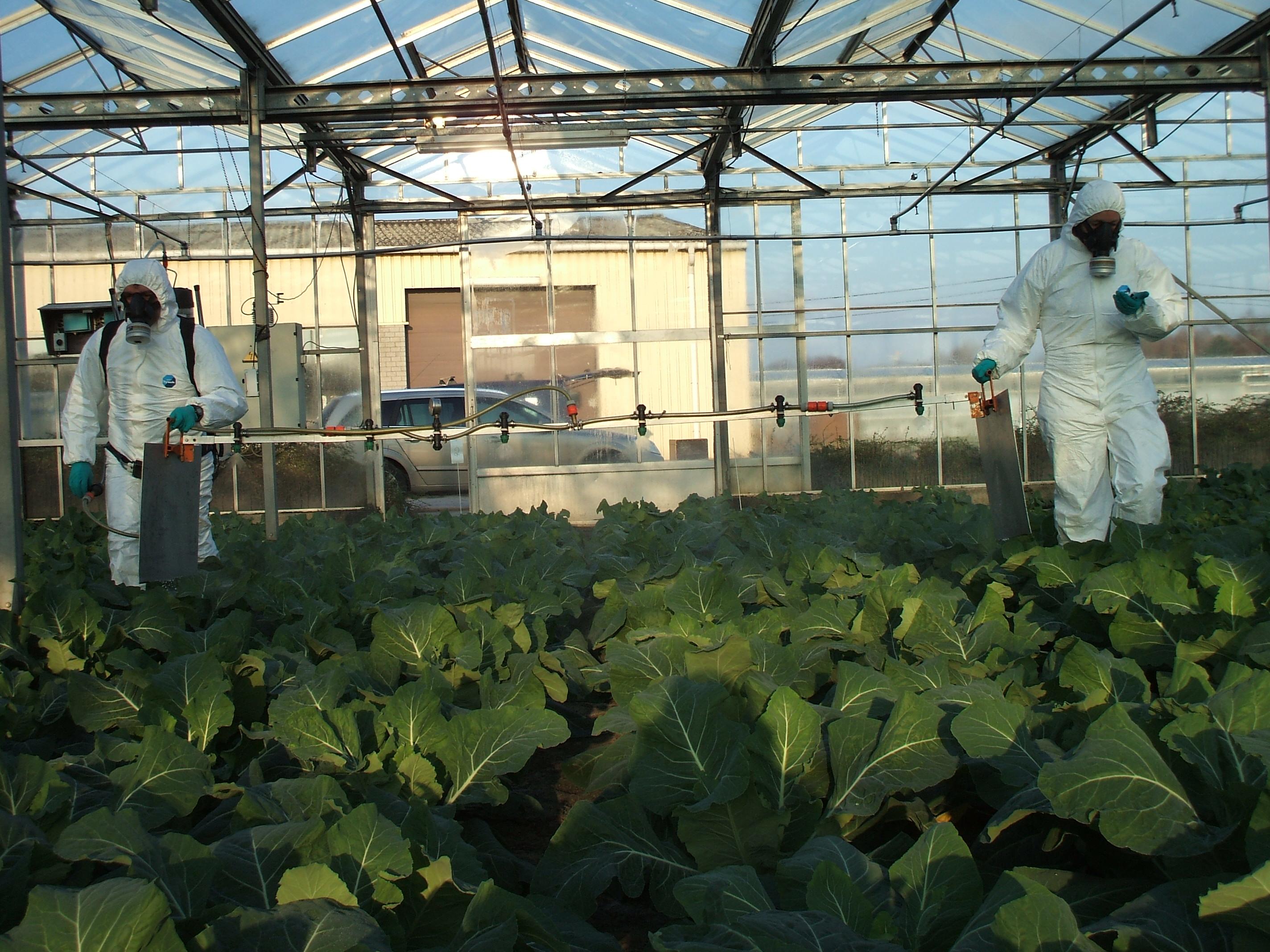 15 ans de recherches au CRA-W sur les résidus de pesticides en petites cultures