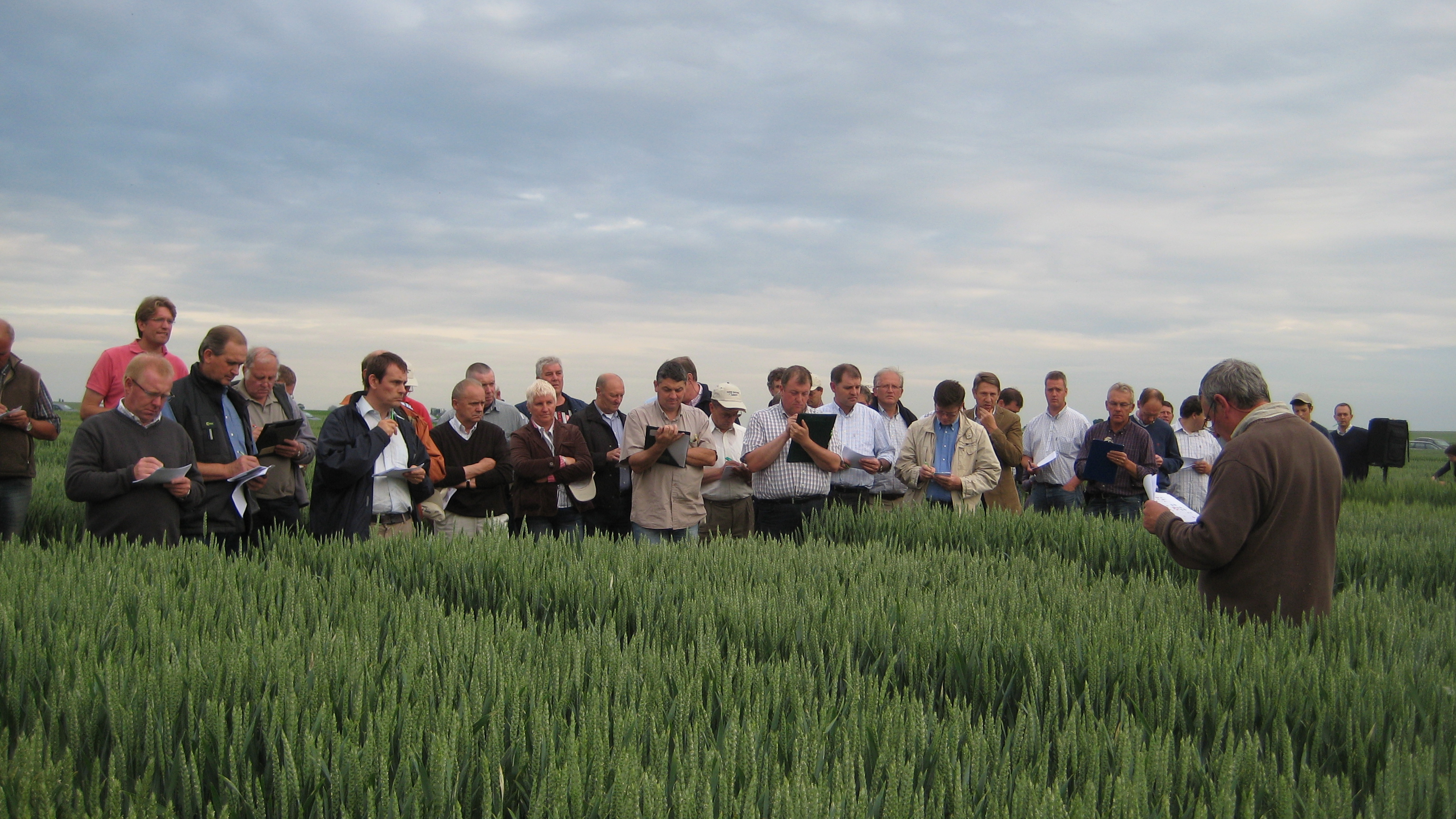 Visite des champs d'essais 2012 du Centre wallon de Recherches agronomiques