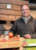 Nouvelle variété de pomme Coxybelle