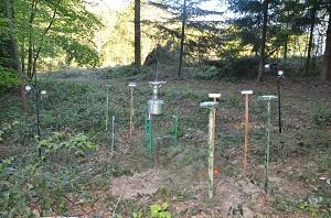 Le capteur de spores : un baromètre de l'état de santé de nos forêts