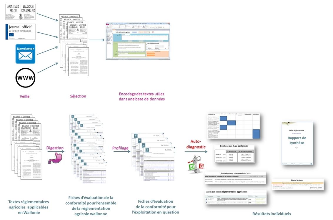 Organisation schématique du travail de veille règlementaire et d'évaluation de la conformité règlementaire