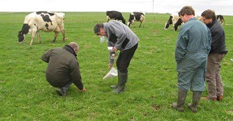 La recherche au service de l'agriculture biologique