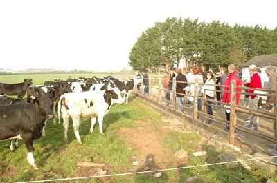 Agriculture de Conservation et Agriculture Biologique : l'impossible équation ?