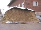 L'ensilage de froment immature : une alternative à l'ensilage de maïs dans l'alimentation des vaches laitières