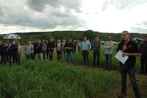 Les légumineuses, éléments clés pour les systèmes d'élevage herbagers