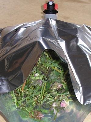 Les légumineuses fourragères, pour des systèmes durables et des produits de haute valeur nutritionnelle