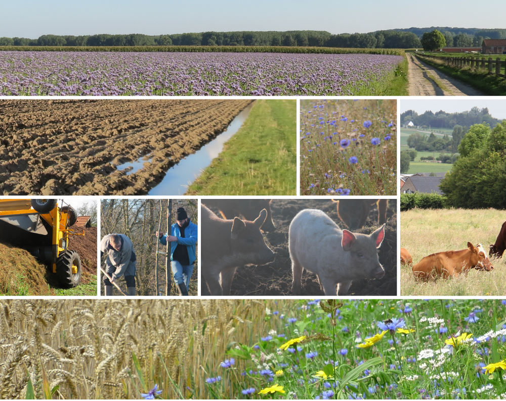 5th Belgian agroecology meeting 'Bridging gaps between principles and practices in agro-ecology'