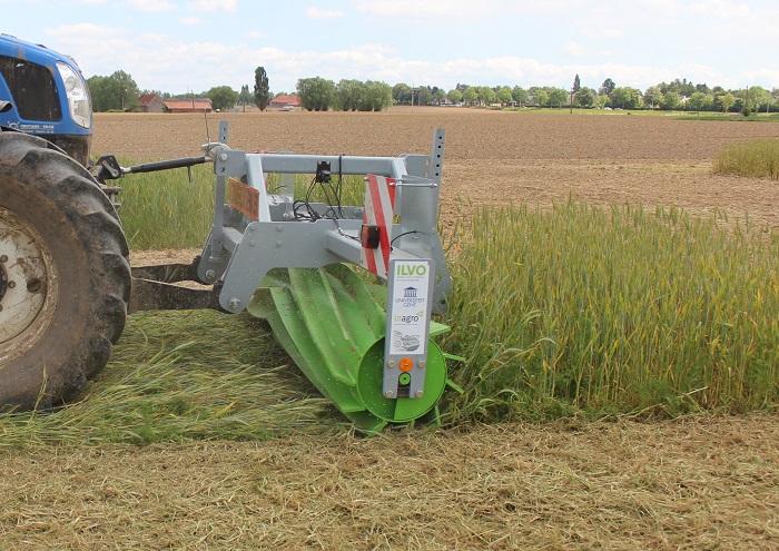Gestion originale d'une interculture longue pour la production de légumes bio