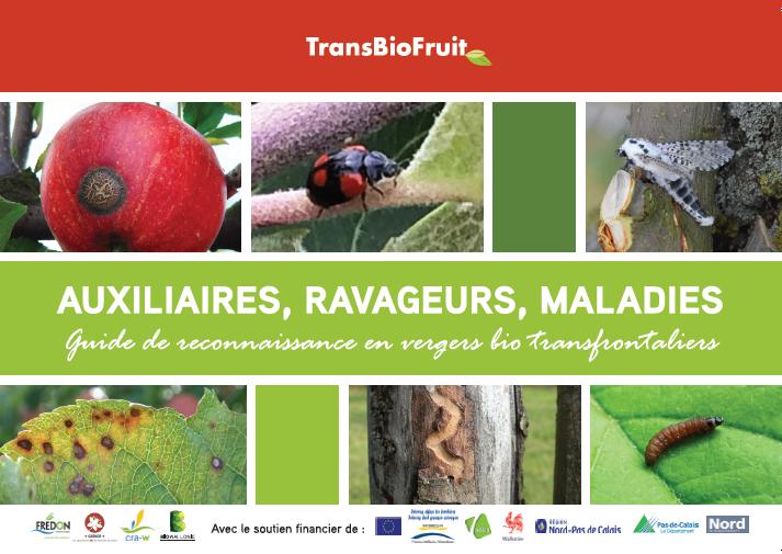 Auxiliaires, ravageurs, maladies  -  Guide de reconnaissance en vergers bio transfrontaliers
