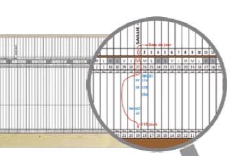Le planning linéaire, un outil pour la conduite des truies dans les élevages BIO