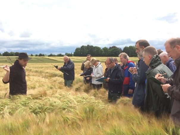 Evaluation des variétés de céréales en vue de conseiller les agriculteurs dans leur choix au semis et de les accompagner dans l'itinéraire le plus adapté à leur variété