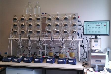 La santé digestive du porcelet nouvellement sevré au cœur d'une recherche collaborative