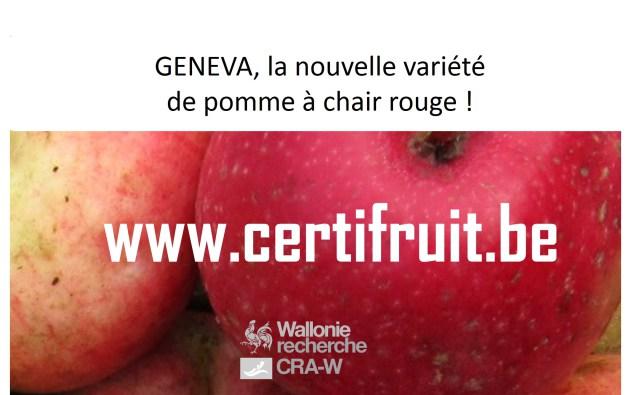 La gamme CERTIFRUIT s'est enrichie d'une nouvelle variété : la 'Geneva' RGF-Gblx