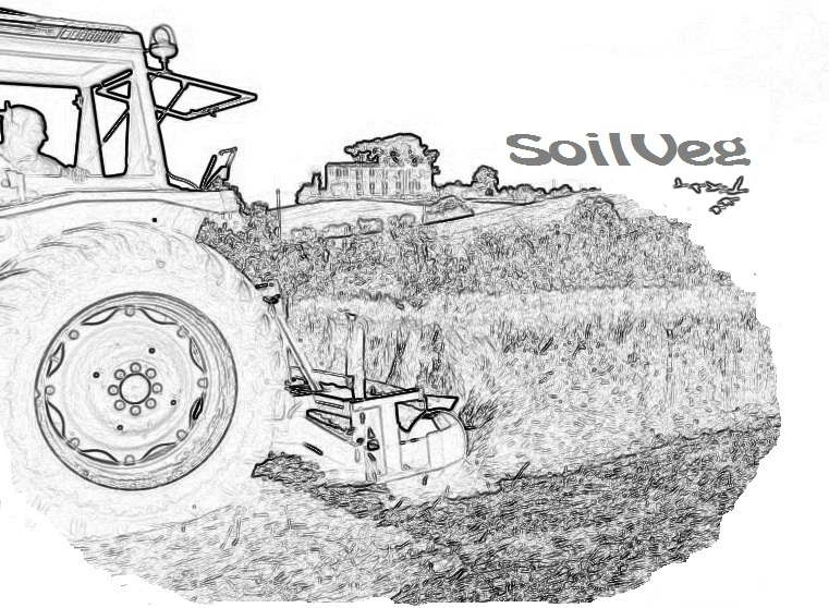 SoilVeg