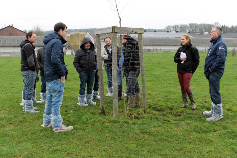 Les aviculteurs bio luxembourgeois intéressés par l'expertise wallonne en parcours volailles