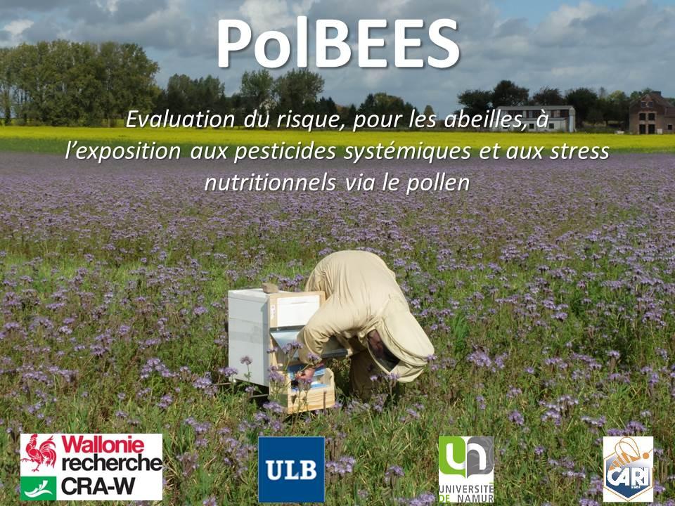 Evaluation du risque, pour les abeilles, de l'exposition aux pesticides systémiques et aux stress nutritionnels via le pollen