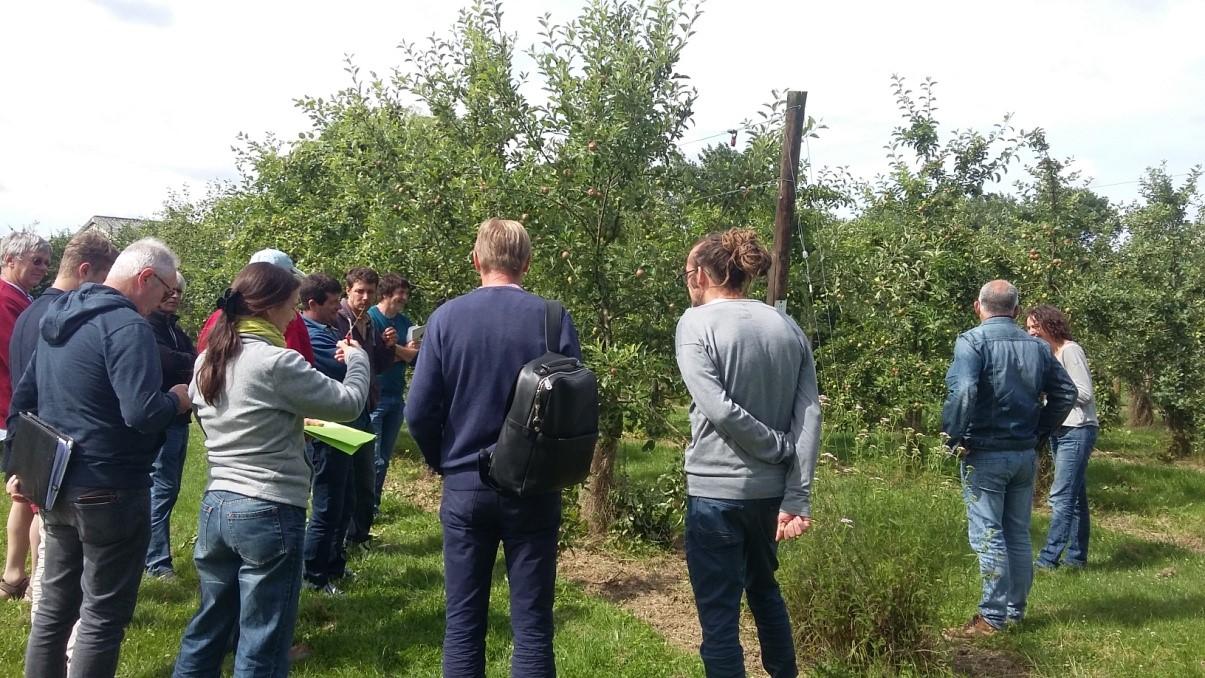 Développer des variétés adaptées à l'agriculture biologique