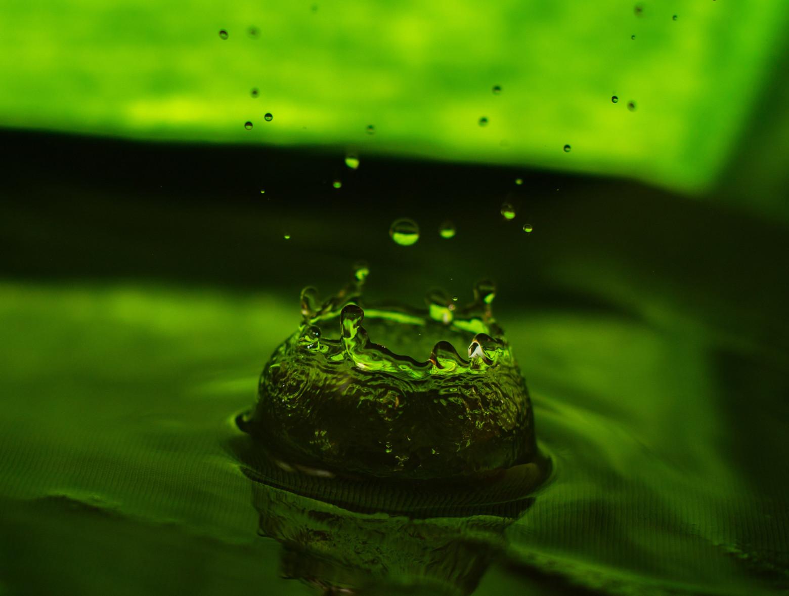Recherche de perturbateurs endocriniens et d'autres substances d'intérêt récent dans les eaux en vue de la protection de la santé publique et de l'environnement
