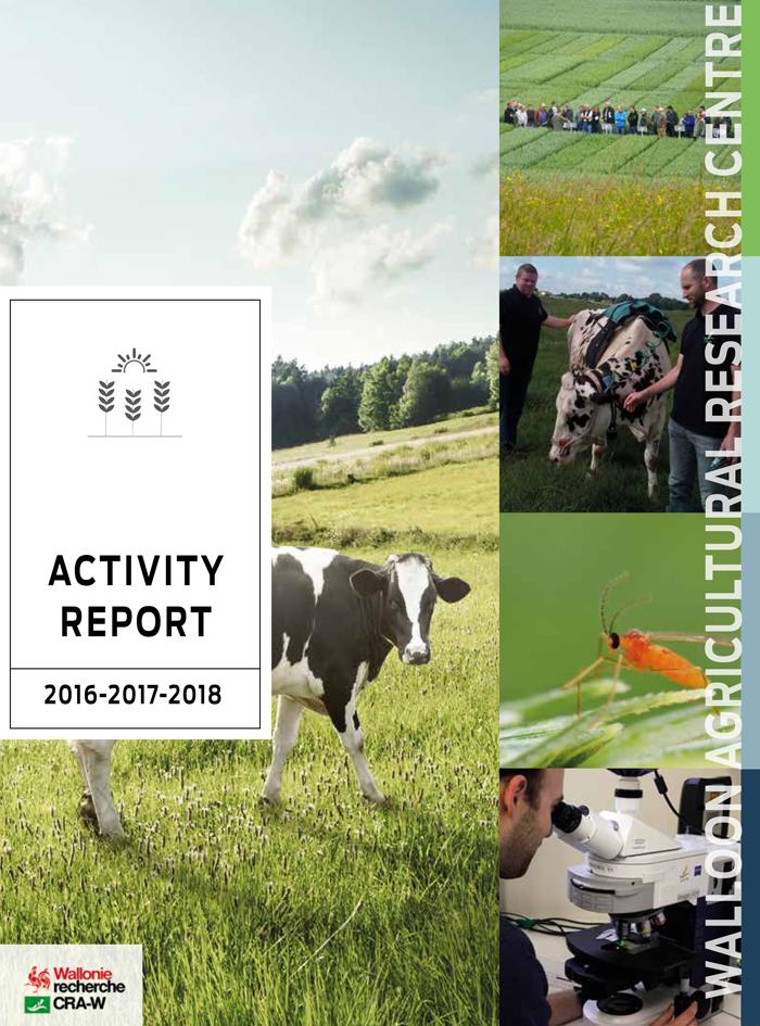 Activity report 2016-2017-2018