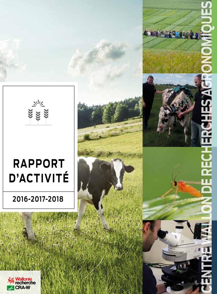 Rapport d'activité 2016-2017-2018