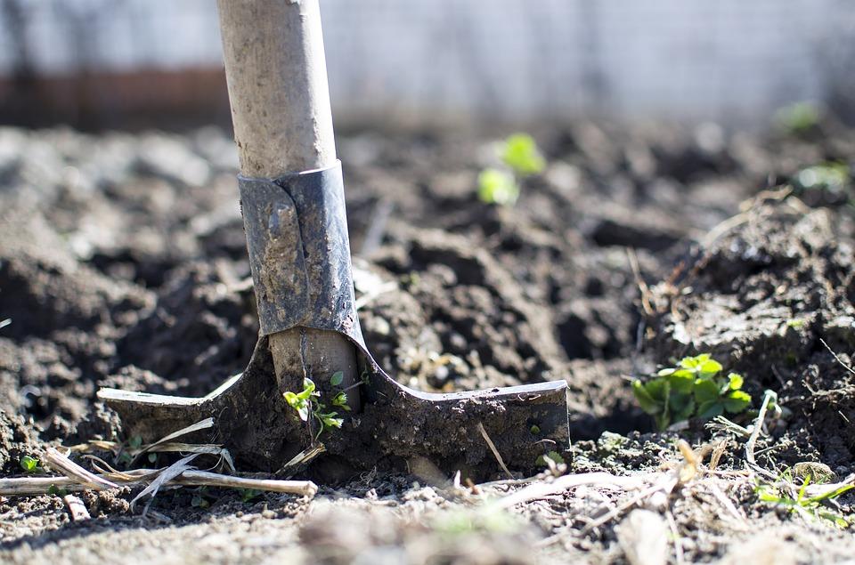 La gestion des matières organiques du sol : un levier pour la fertilité et le climat