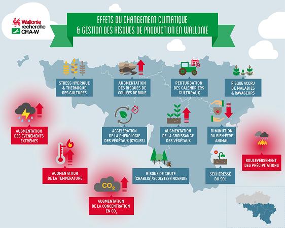 Effets du changement climatique et gestion des risques de production en Wallonie