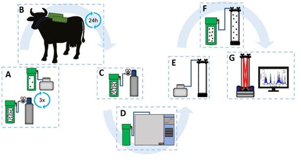 Infrared Spectroscopy and Multivariate Method to Quantify Methane in Gas Sample Emitted by Cows