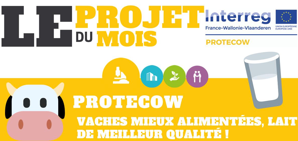 PROTECOW projet du mois du programme INTERREG